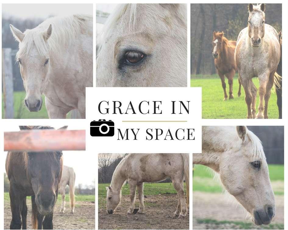 Grace In-2
