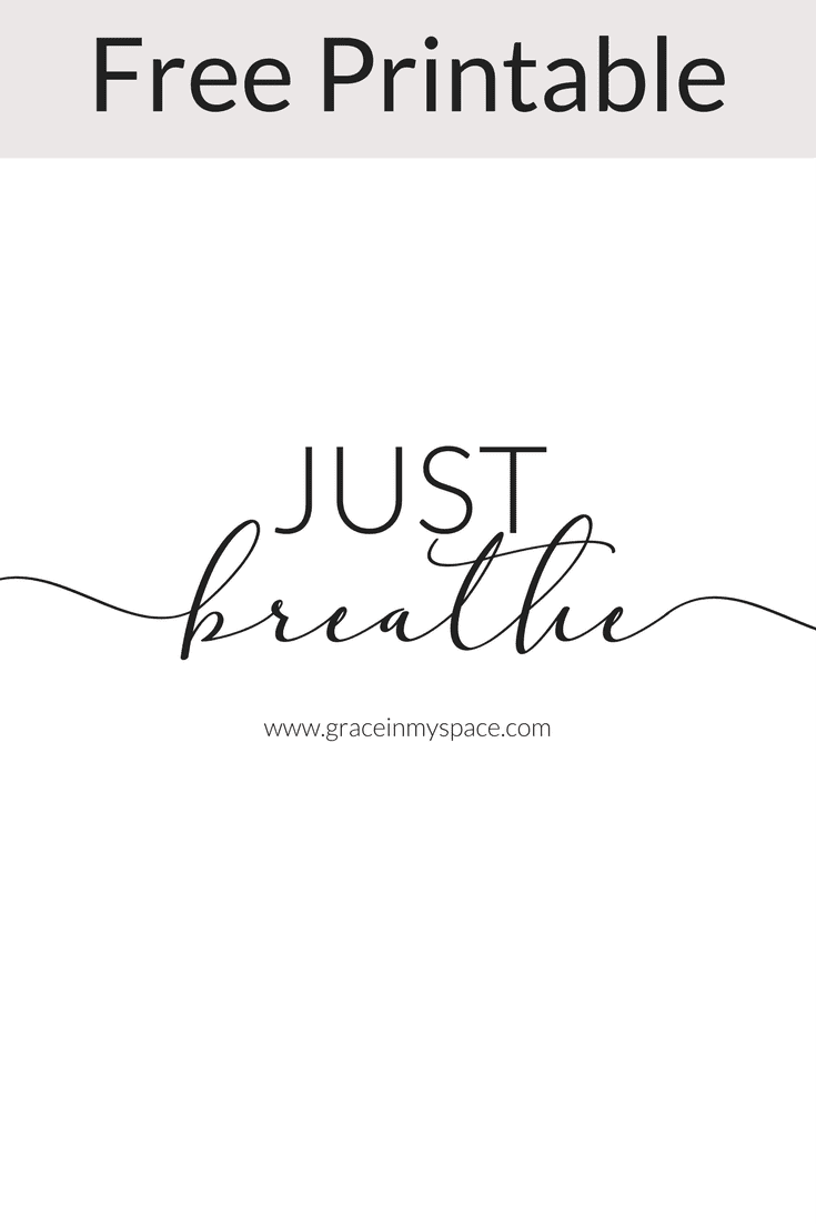 Free Printable! Do you find yourself constantly spinning over a stressful situation? Today I want to talk about taking a step back and allowing yourself to Just Breathe.