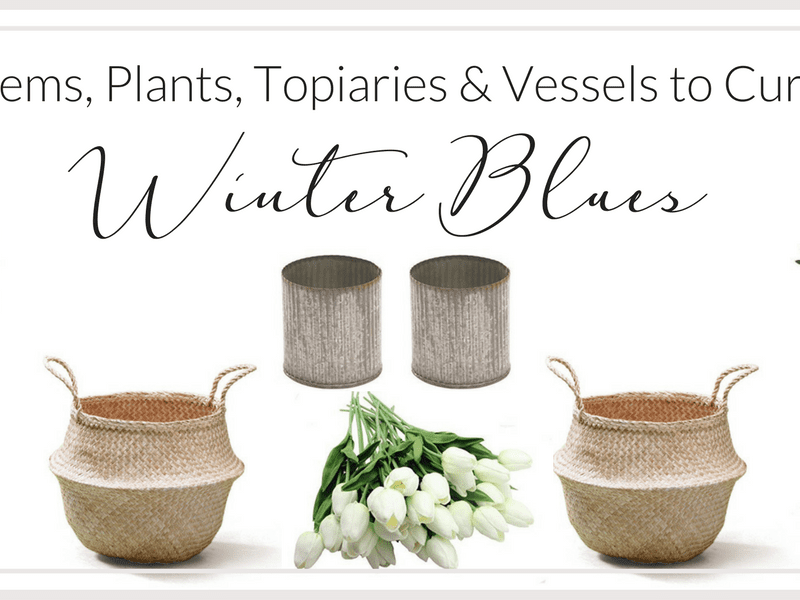 25+ Stems, Plants, Topiaries & Vessels to Beat the Winter Blues