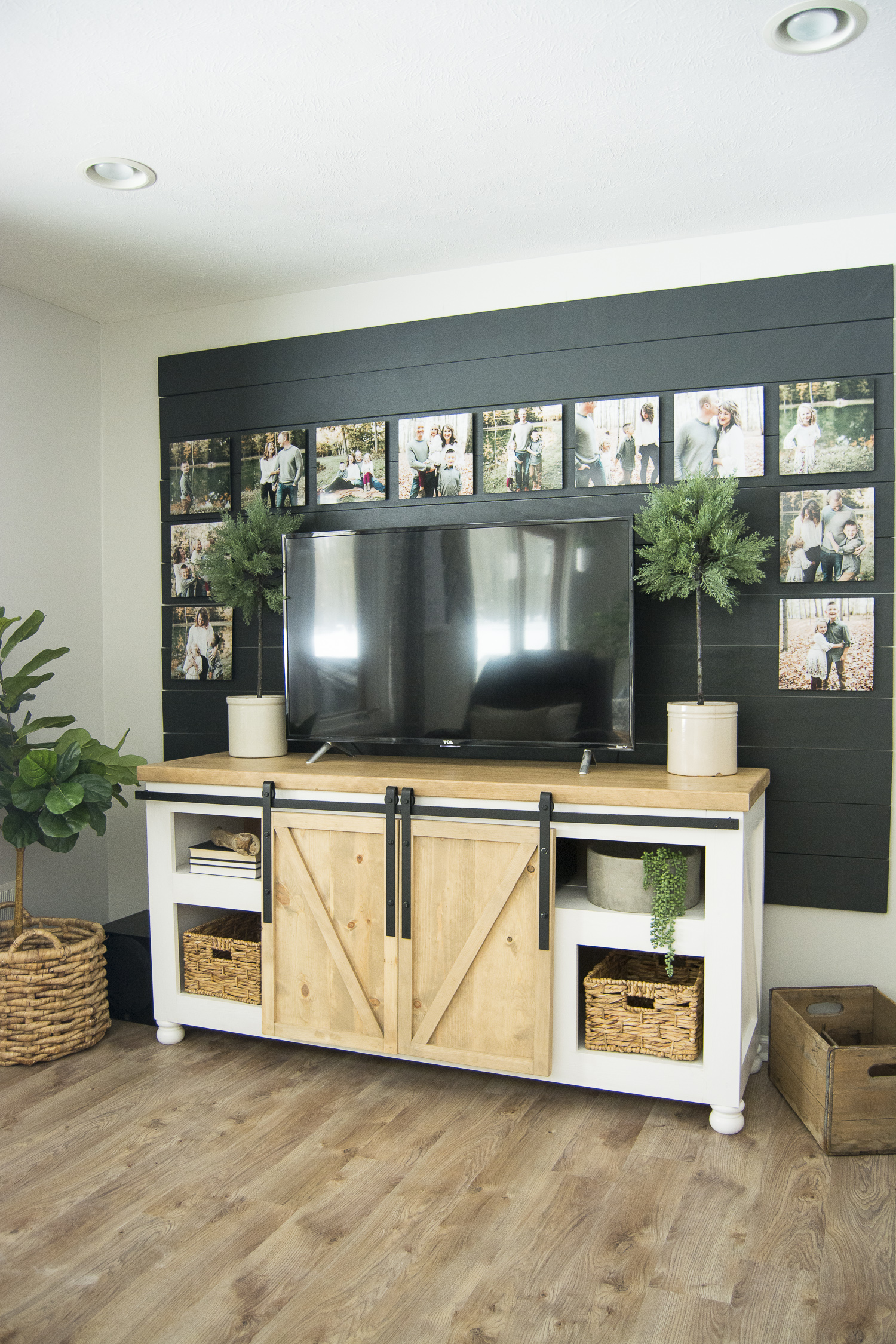 Media console storage ideas.