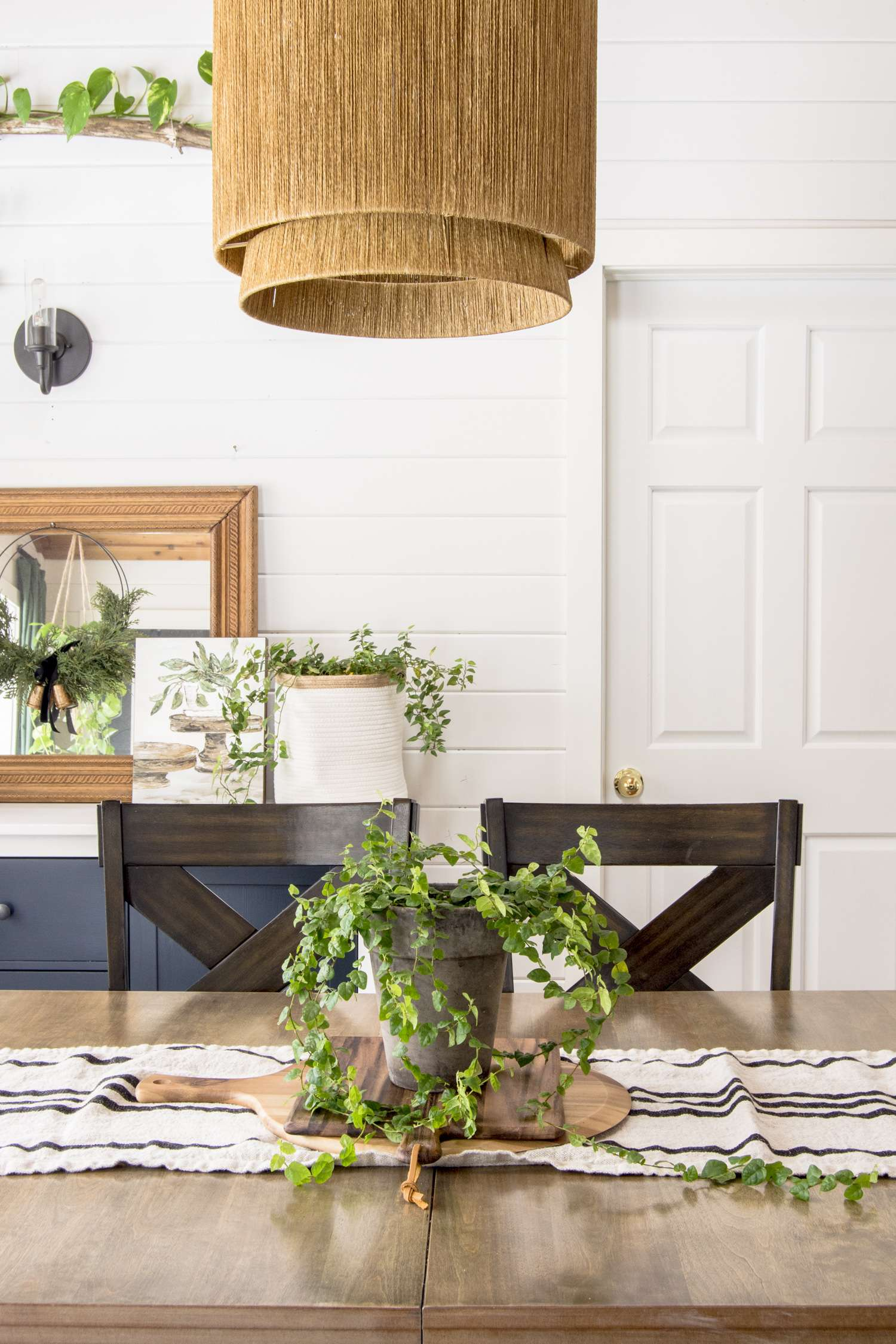 How to display vining indoor plants.