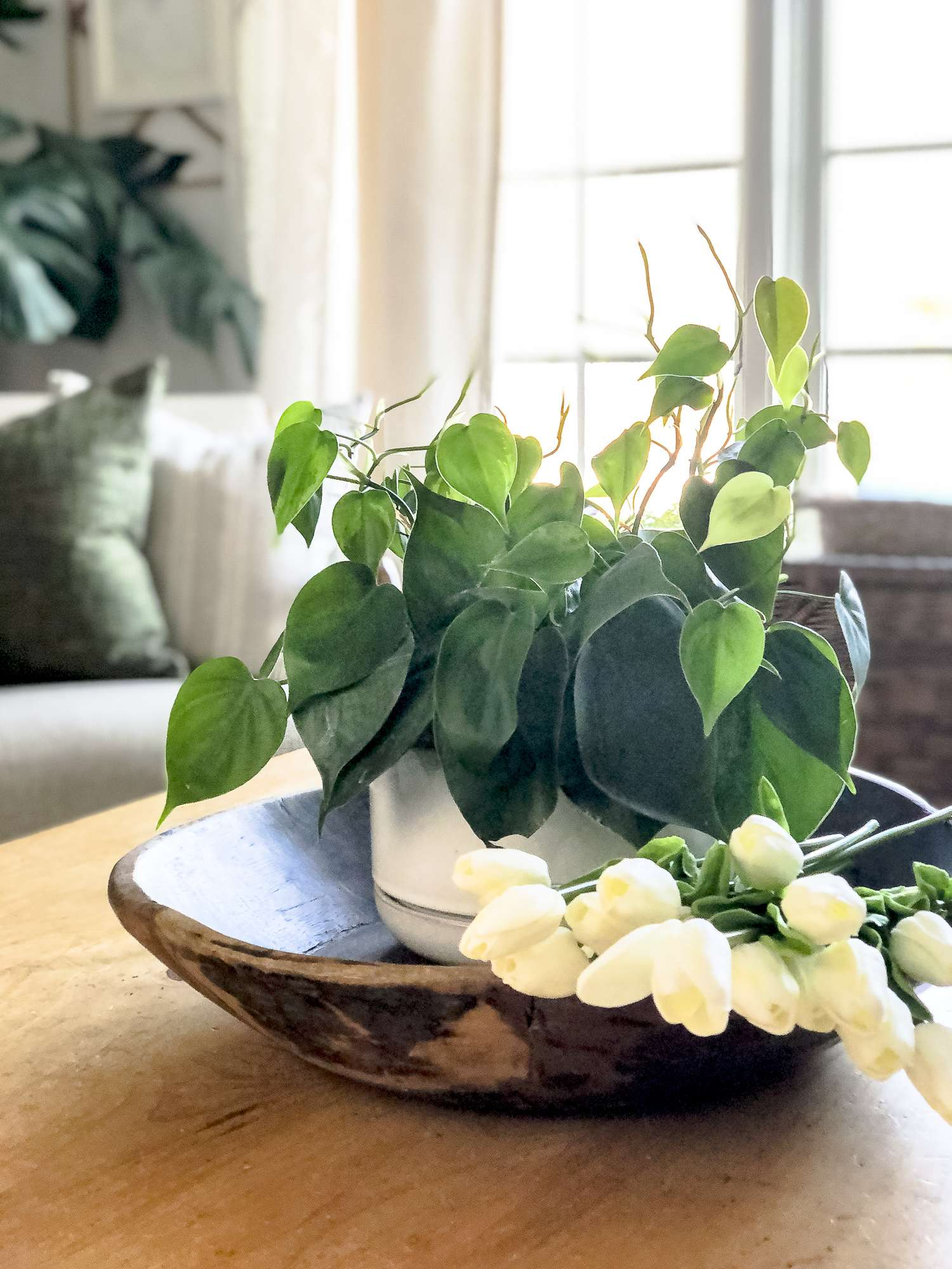 Pothos plant and tulips.
