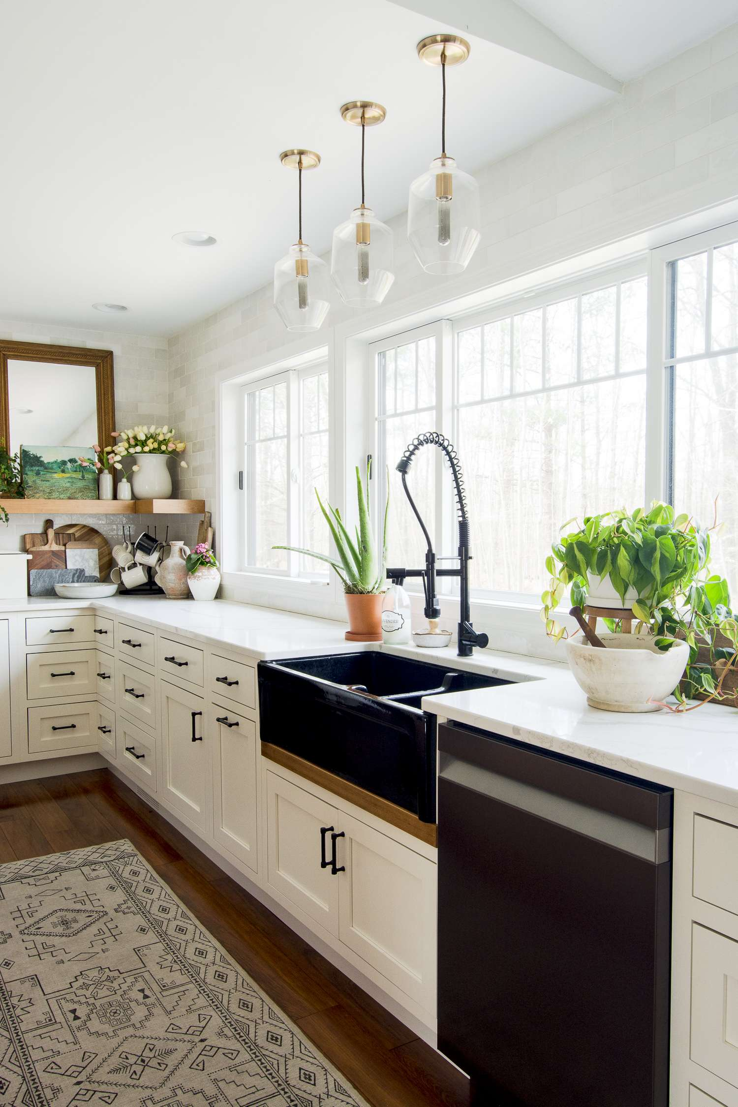 Modern farmhouse kitchen with houseplants.