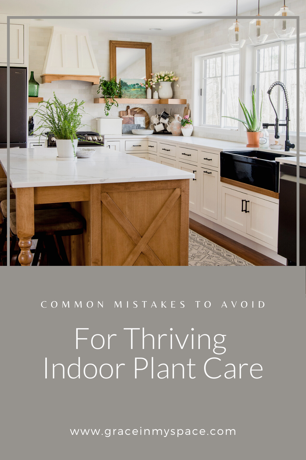 Common Mistakes to Avoid for Indoor Plant Care