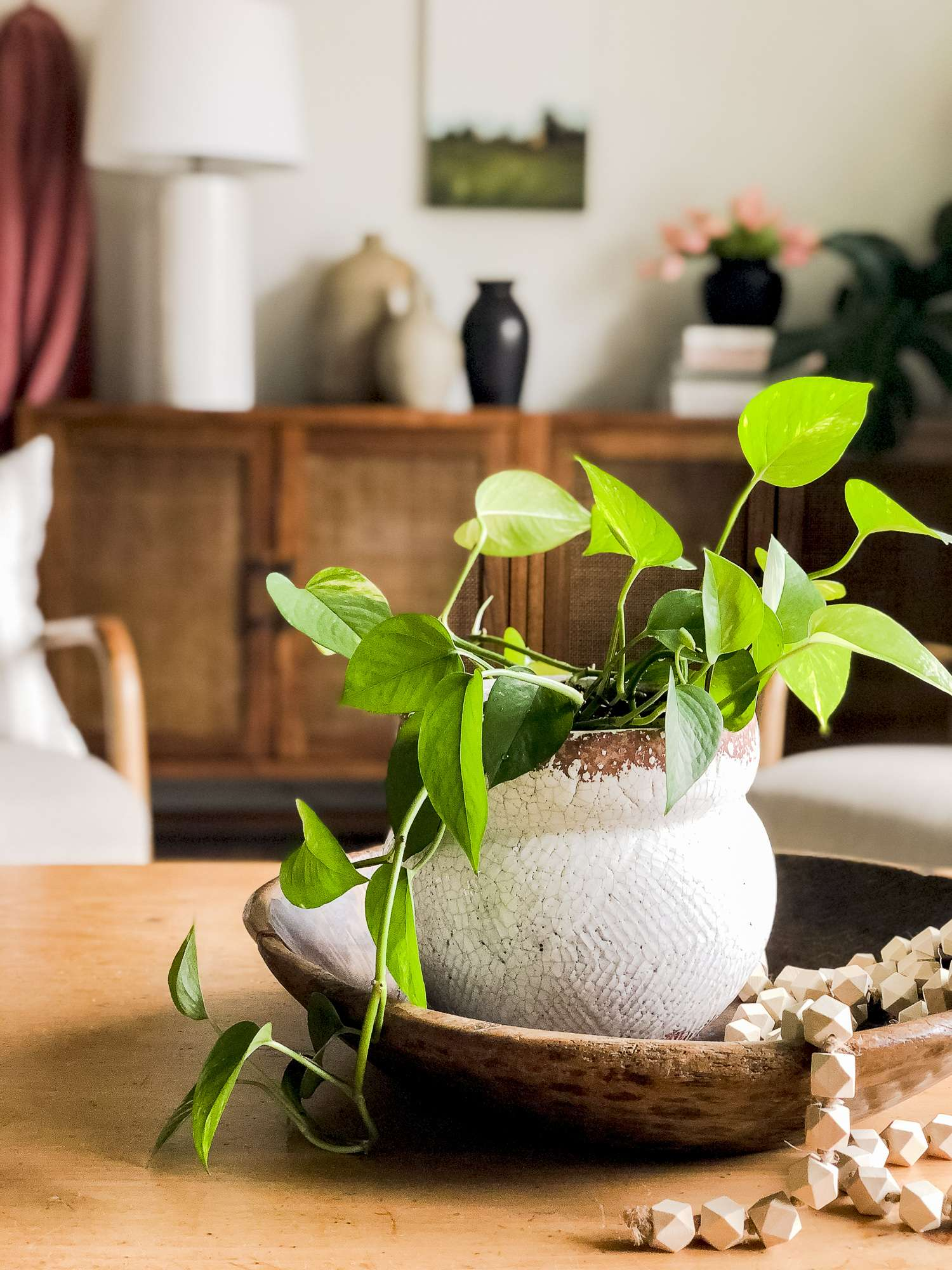 Coffee table plant decor