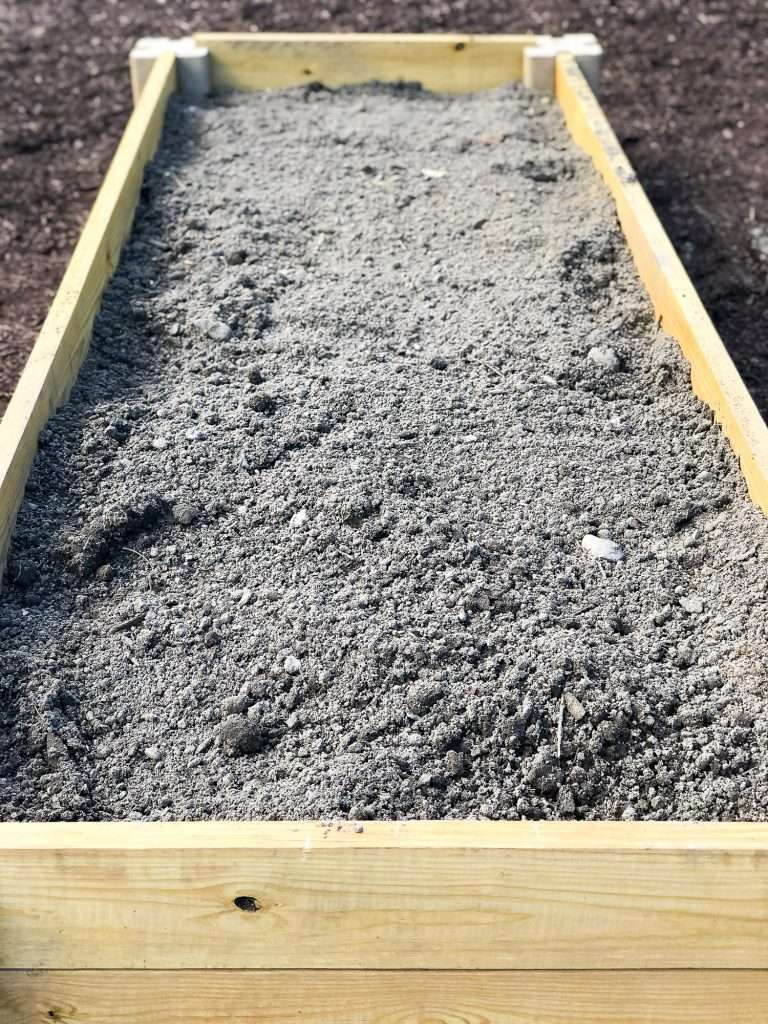 Raised garden bed with dirt.