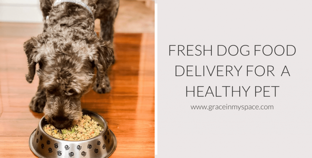 Dog food delivery service.