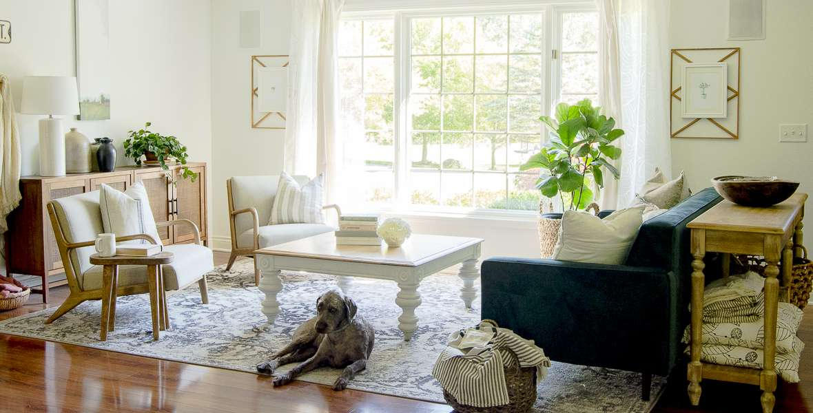 Living room with labradoodle.
