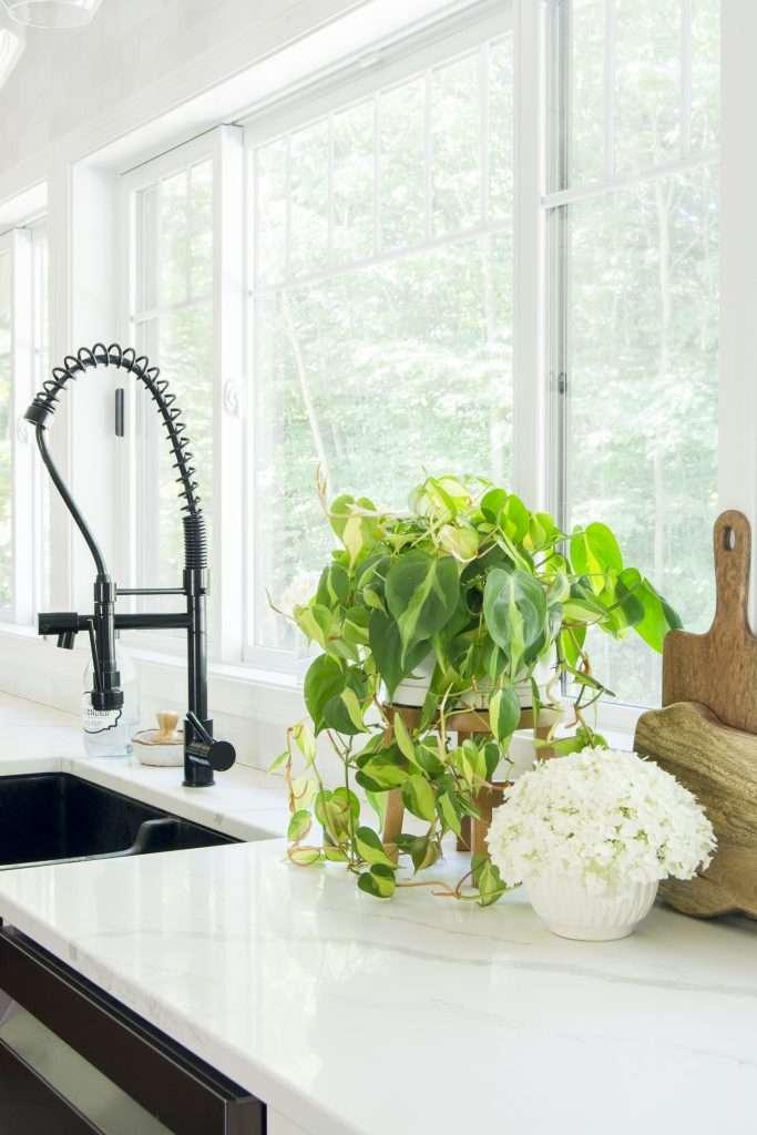 Kitchen faucet.