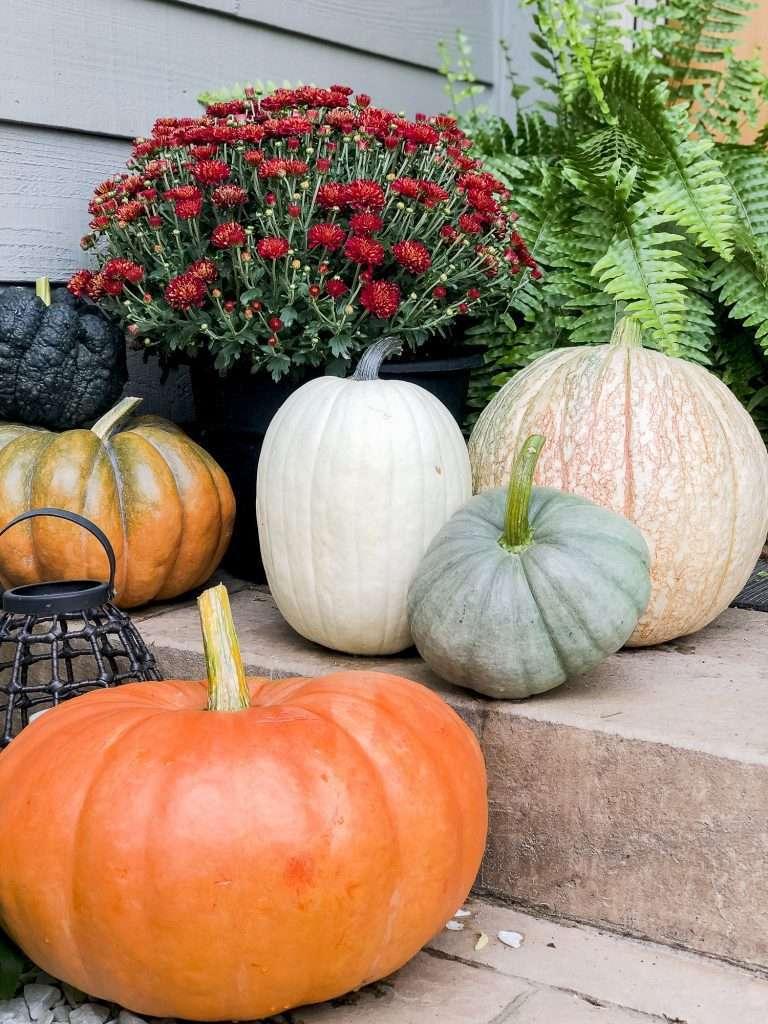 Pumpkins for fall porch decor.