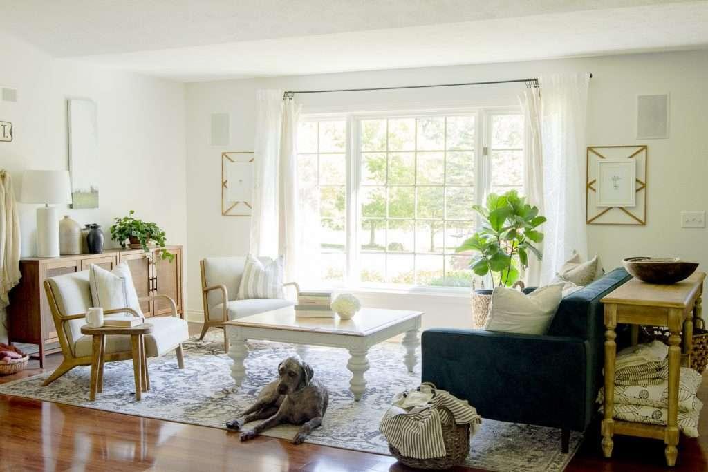 A modern living room area rug.