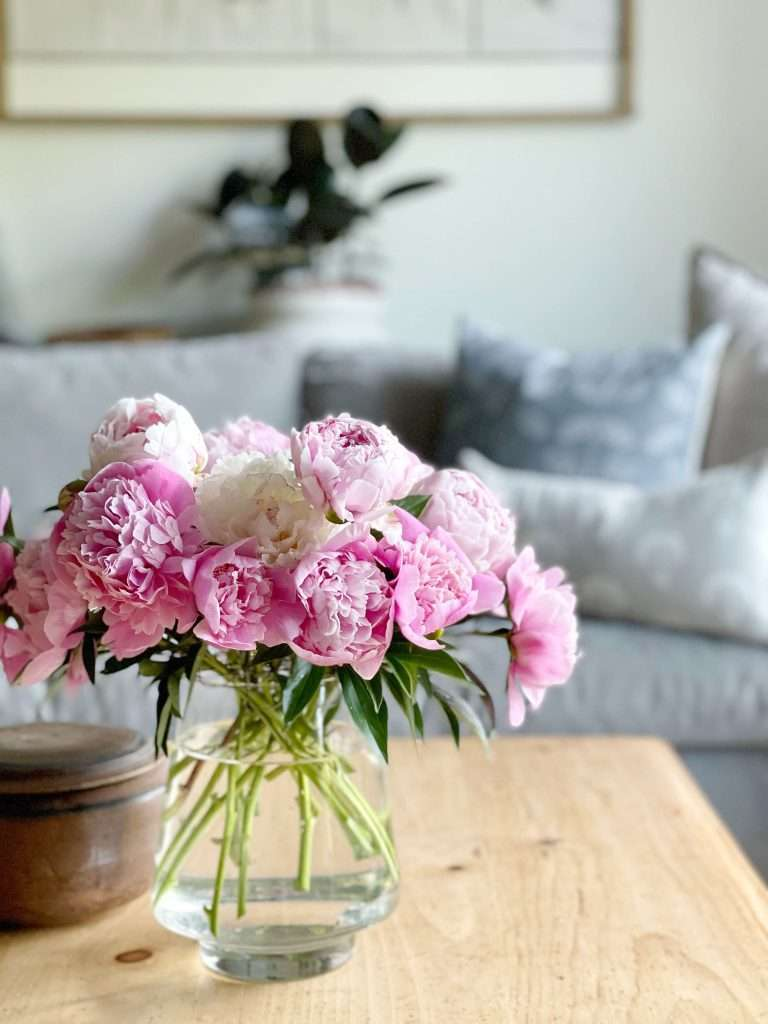 Bouquet of peonies on a coffee table.
