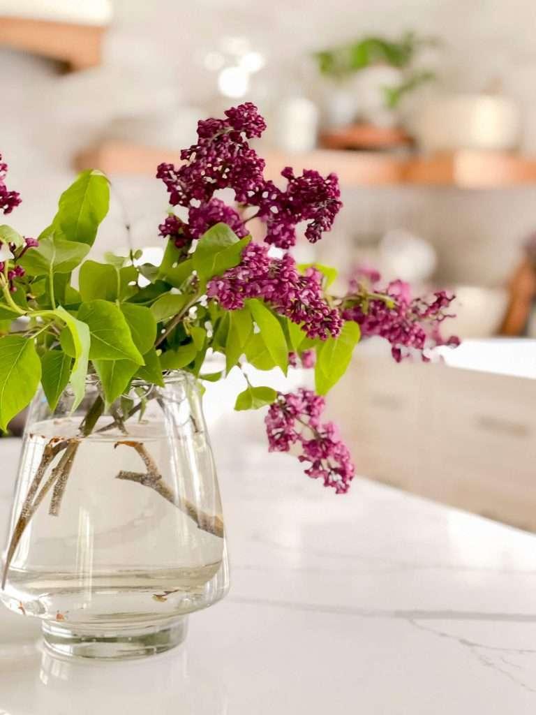 Bouquet of lilacs