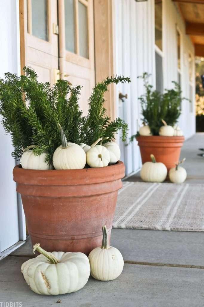 Fall front porch pots