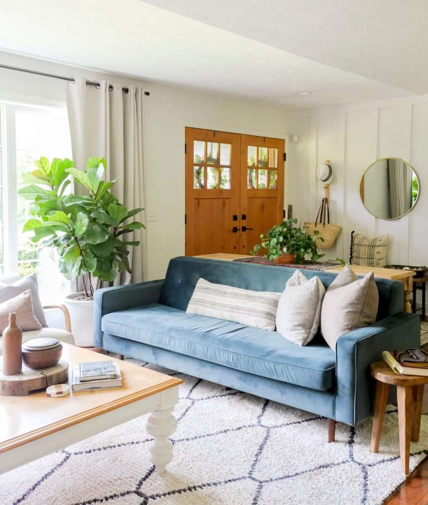 Green plants in a living room.
