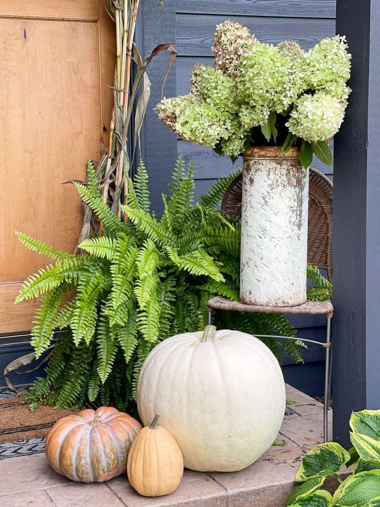 Pumpkins and hydrangeas on a front porch in fall.