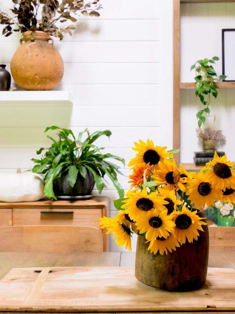 Sunflowers on a dining table.